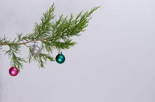 Cedar bough with ornaments