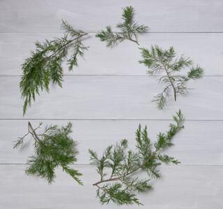 Cedar circle wreath