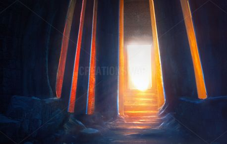 Light in the temple (74536)
