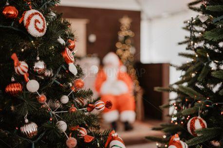 Christmas scene (75059)