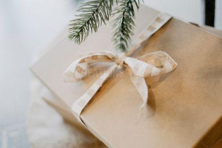 Christmas present  (75062)