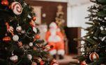Christmas scene (75080)