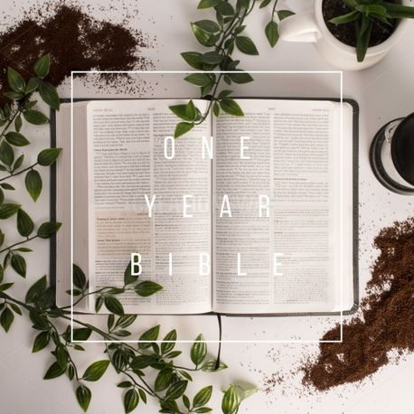 One year bible (75194)
