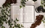 One year bible (75195)