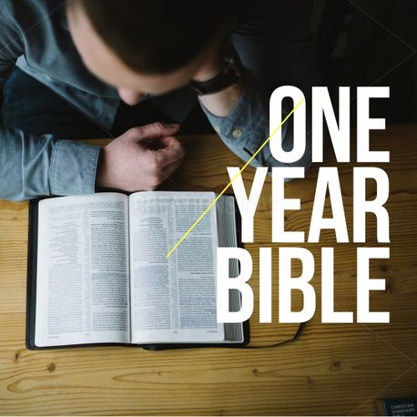 One year bible (75520)