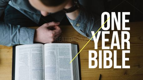One year bible (75521)