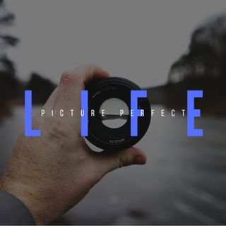 Picture perfect life
