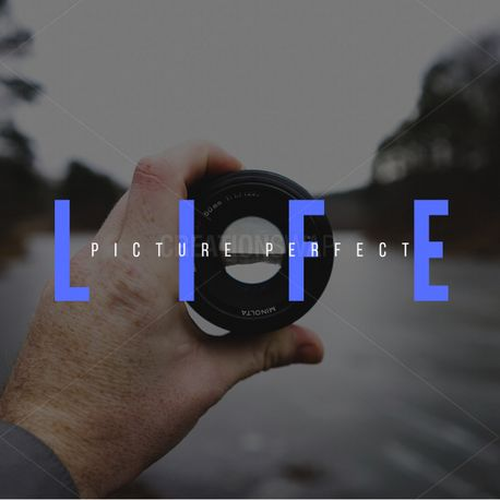 Picture perfect life (75537)