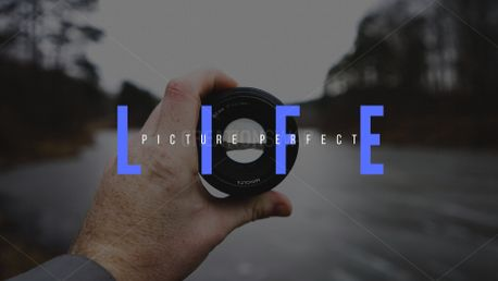 Picture perfect life (75538)