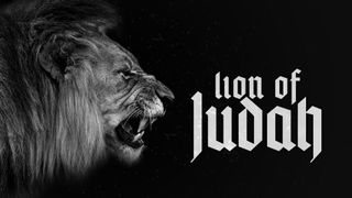 Lion Themed Slides with Source