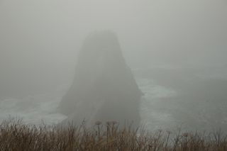 Rock in the fog