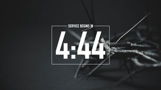Crown of Thorns Countdown