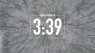 Snowy Countdown