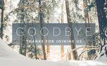 Winter Forest Goodbye (76109)
