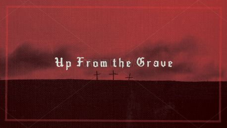 Up From the Grave (76667)