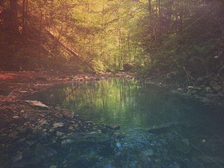Quiet Pool (76988)