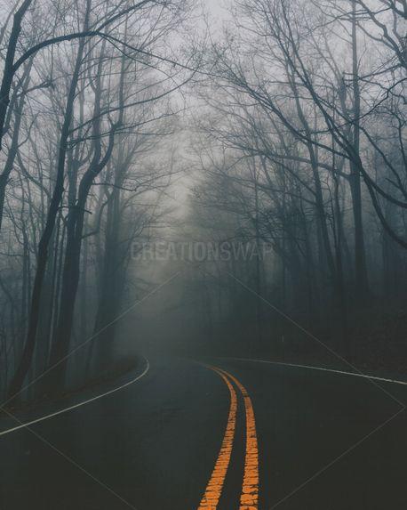 Foggy Road (76991)