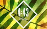 Palm Sunday Countdown (77269)