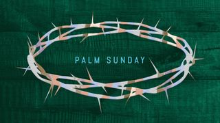 Palm Sunday Slides w/PSD Files