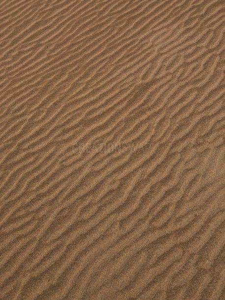 Sand Dunes (77398)