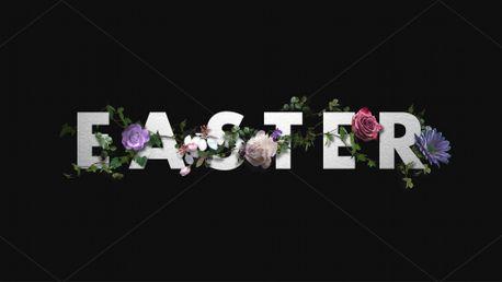 Easter Flowers (77412)