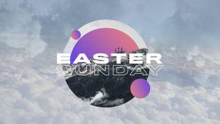 Easter Sunday: VOLUME ONE Stil