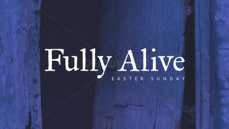 Fully Alive (77555)