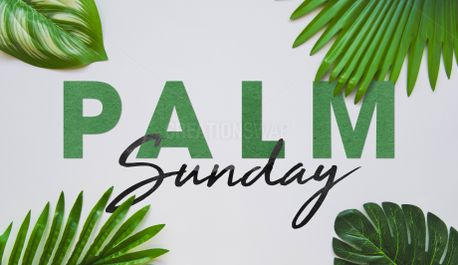 Palm Sunday (77765)