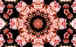 Flowers 3 (77925)