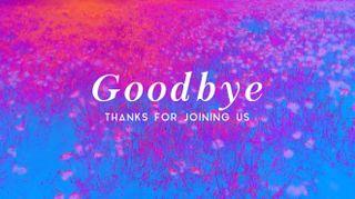 Poppy Field Goodbye