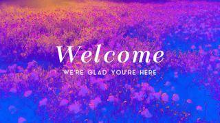 Poppy Field Welcome