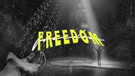 Freedom Stills (78690)