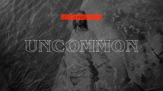 Uncommon Stills