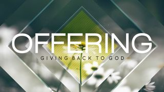 Newspring (Offering)