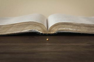 Bible and Mustard Seed