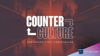 Counter Culture // with PSD