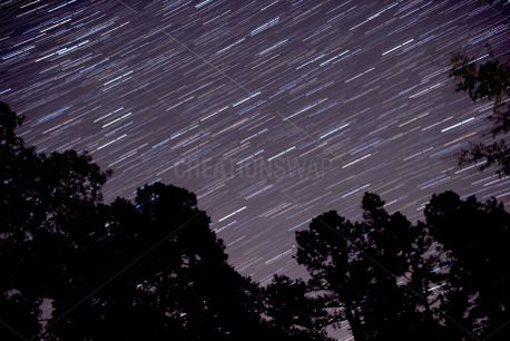 Star Trails (79418)