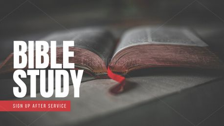 Bible Study (79652)