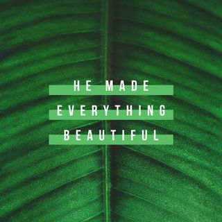 Everything Beautiful