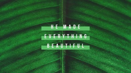 Everything Beautiful (79843)