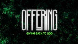 Disheveled (Offering)