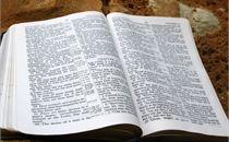 Open Bible on Rock
