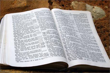 Open Bible on Rock (8060)