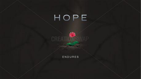 Hope Endures (80258)
