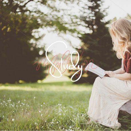 Bible Study (80716)