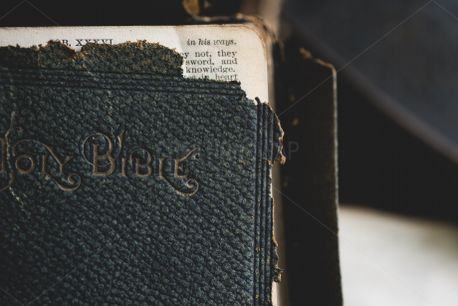 Well Used Bible (80909)