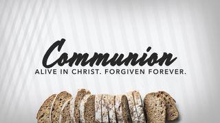 Communion Social Squares