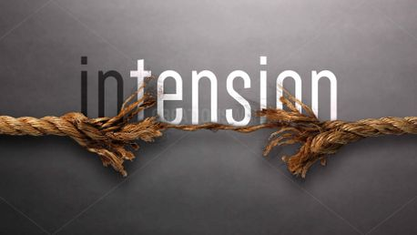 Intension (81247)