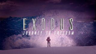 Exodus Sermon Bumper