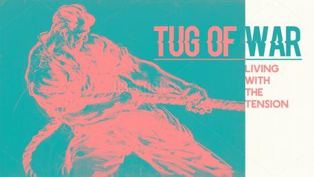 Tug of War (81628)